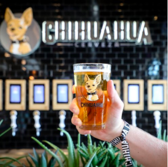 PourMyBeer at Chihuahua Cerveza Taproom